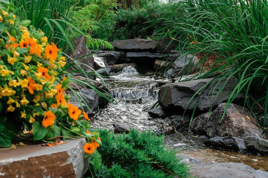flowing stream with flowers